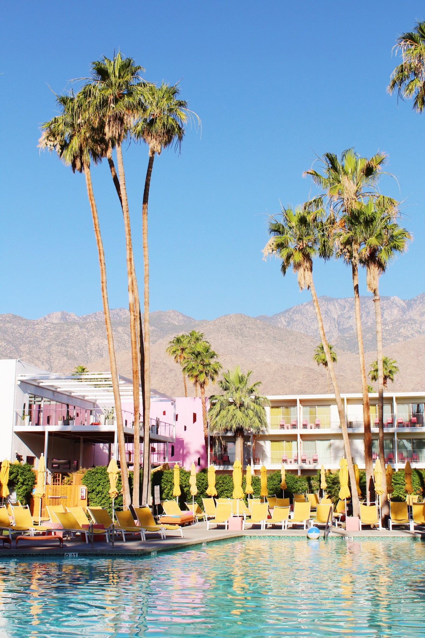 Lifestyle blogger Mollie Moore shares a hotel review of The Saguaro Palm Springs