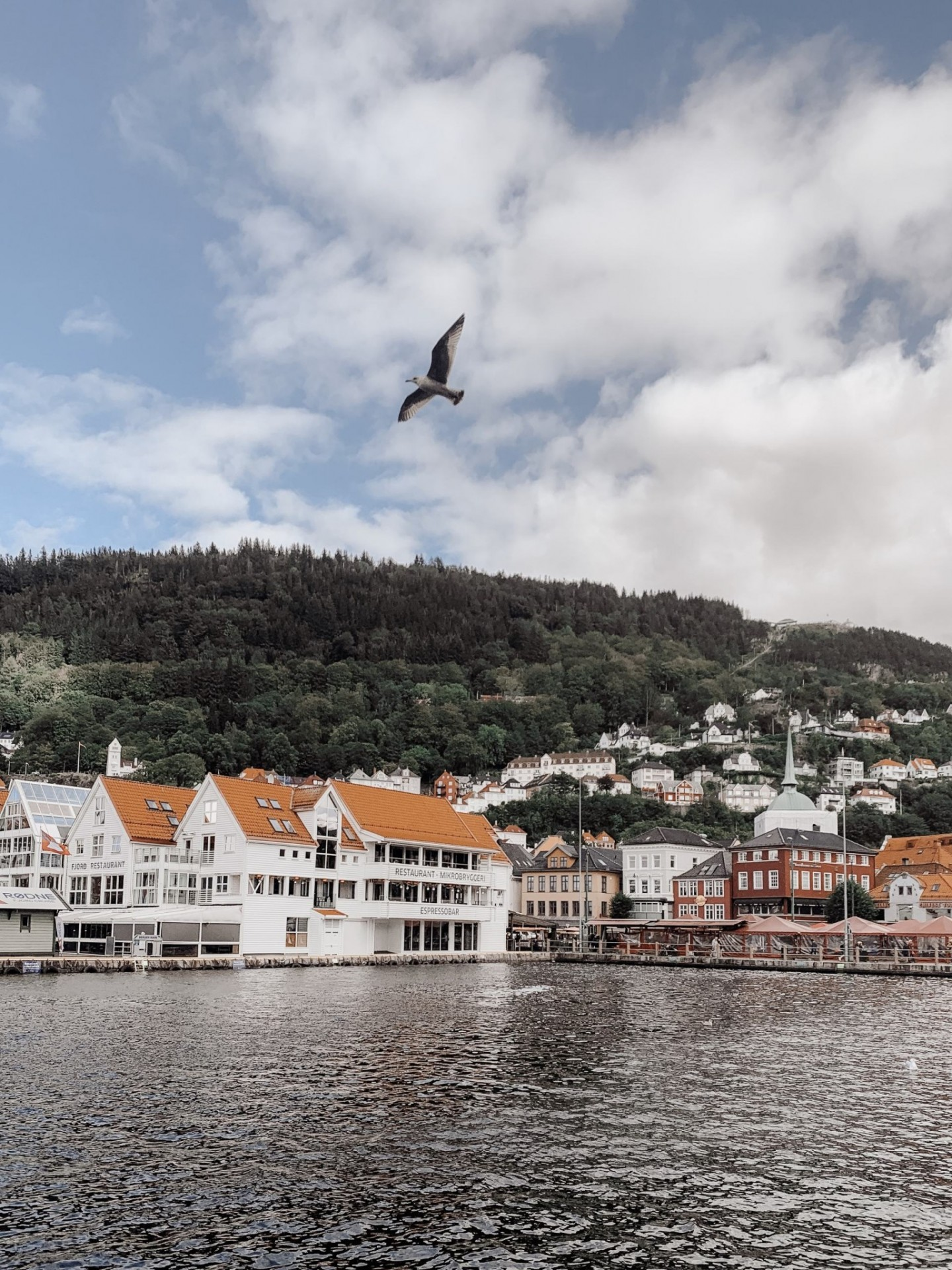 Norway travel guide to Bergen and Stavanger featured by top London travel blogger, Mollie Moore