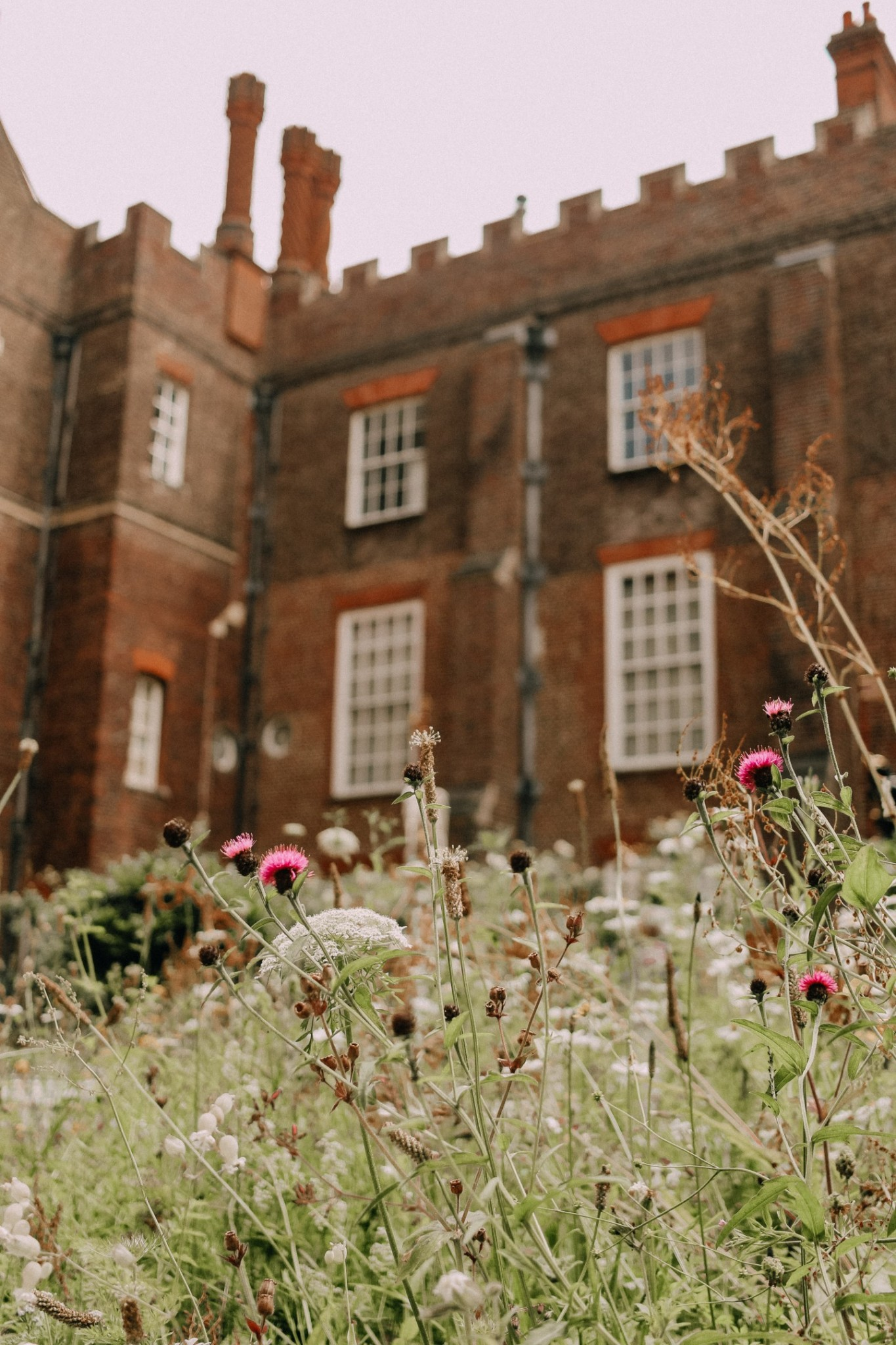Lifestyle blogger Mollie Moore shares photos from Hampton Court Palace in London
