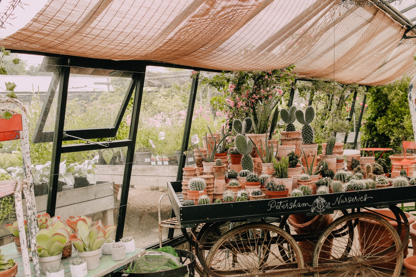 Lifestyle blogger Mollie Moore enjoys an afternoon at Petersham Nurseries in Richmond - Petersham Nurseries featured by popular London travel blogger, Mollie Moore